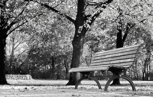 Parkbank im Herbst, Lisa Spreckelmeyer / pixelio.de