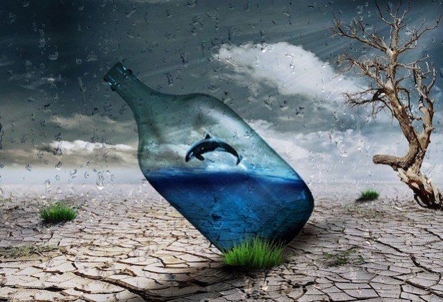 Luzides Träumen - Wal in Flasche