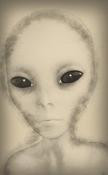 Extraterrestrische Lebensformen